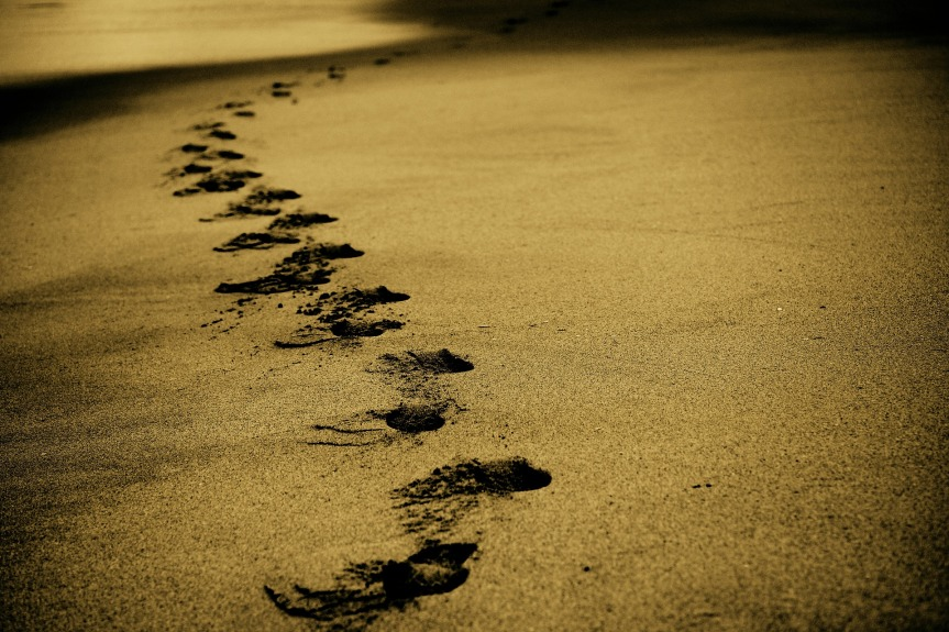 Walking In The Footsteps Of Those Who CameBefore